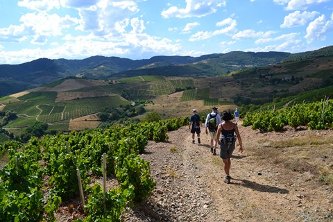 independent walking tour in France Beaujolais